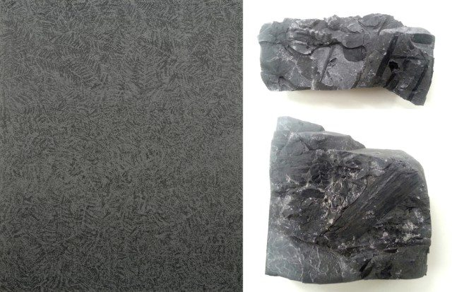 Left: Hugo Boguslawski: Carboniferous (2012). Photo: Hugo Boguslawski. Right: Fern and horsetail imprints. Photo: Hugo Boguslawski.