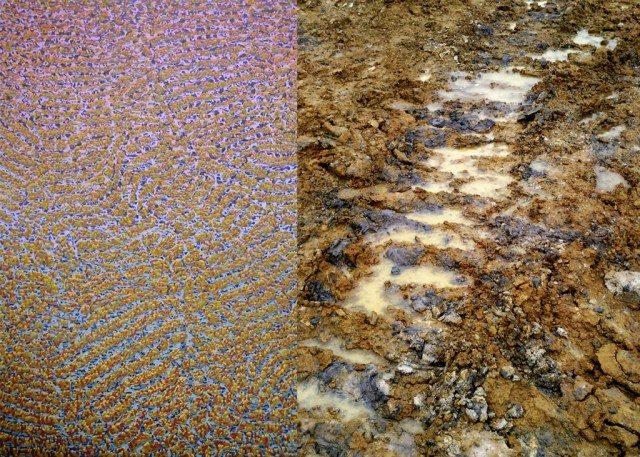Left: Hugo Boguslawski: Caterpillar (2012). Photo: Hugo Boguslawski. Right: In Unterstürmig II clay pit at Buttenheim. Photo: Hugo Boguslawski.