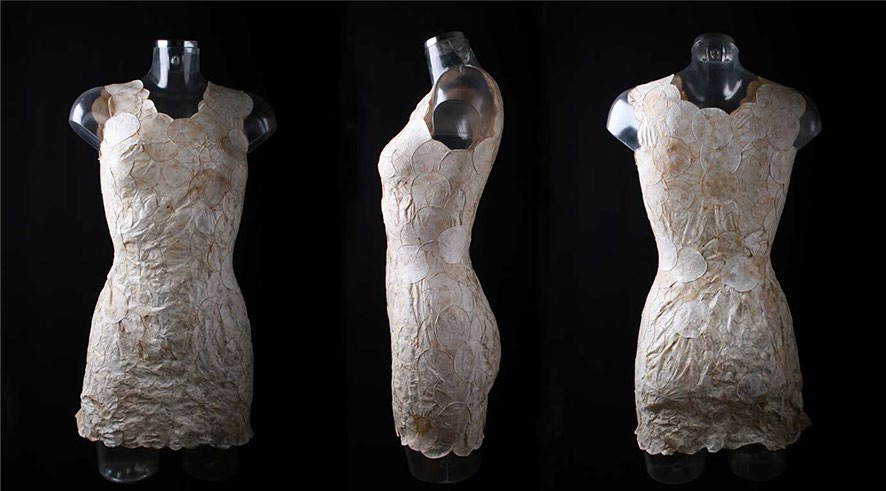 Aniela Hoitink: MycoTEX dress (2018). Displayed as part of the exhibition FUNGAL FUTURES. Photo: Aniela Hoitink.