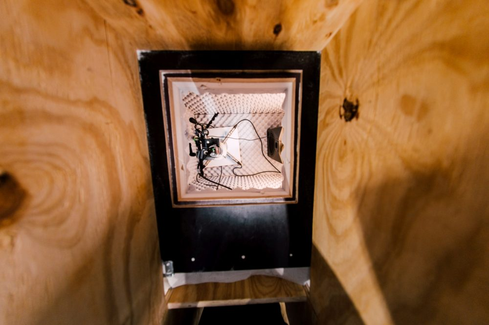 Ursula Damm: View into the fly box of the installation (2019). Photo: Rytis Seskaitis.
